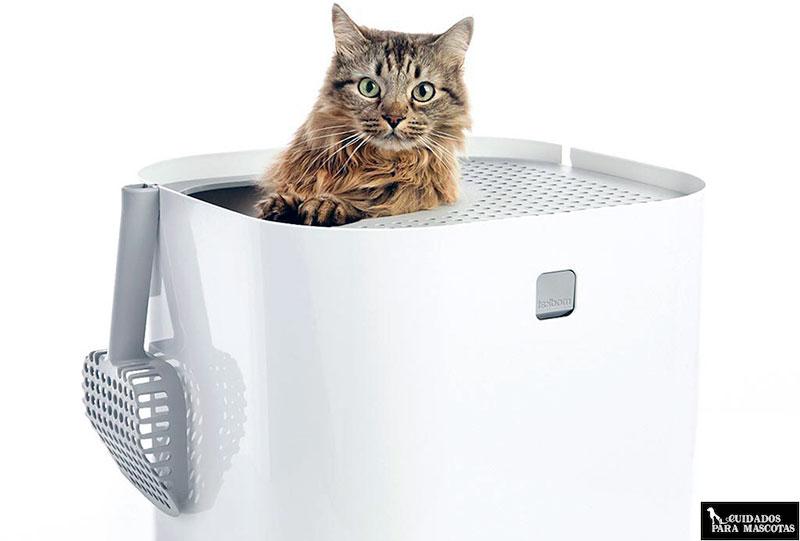Arenero ModKat con entrada superior para gatos
