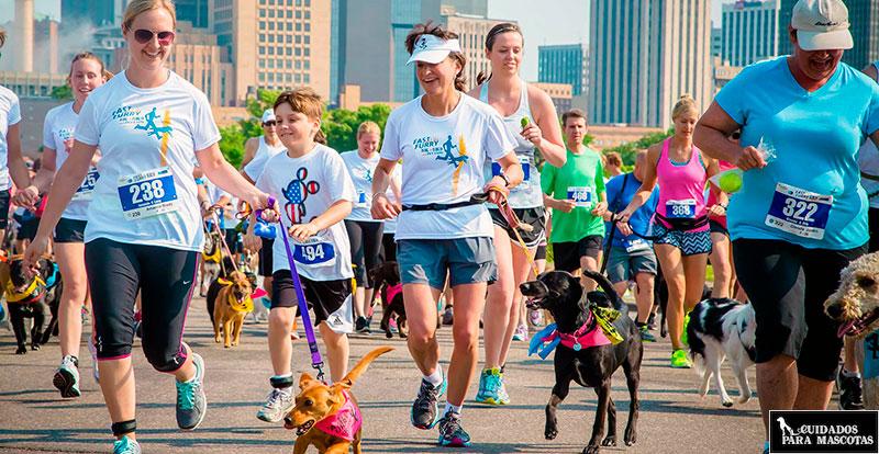 Corre con tu perro en carreras populares