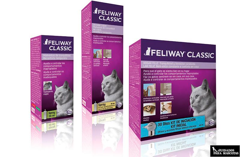 Feliway ayuda a que tu gato no muerda las plantas