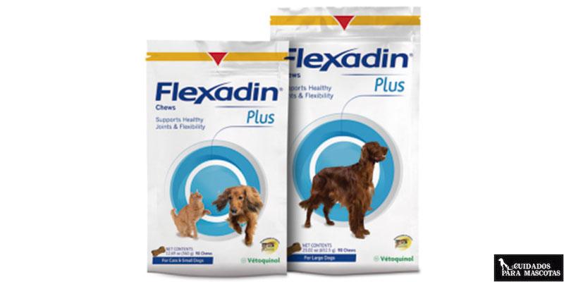 Flexadin Plus es un excelente condroprotector para perros