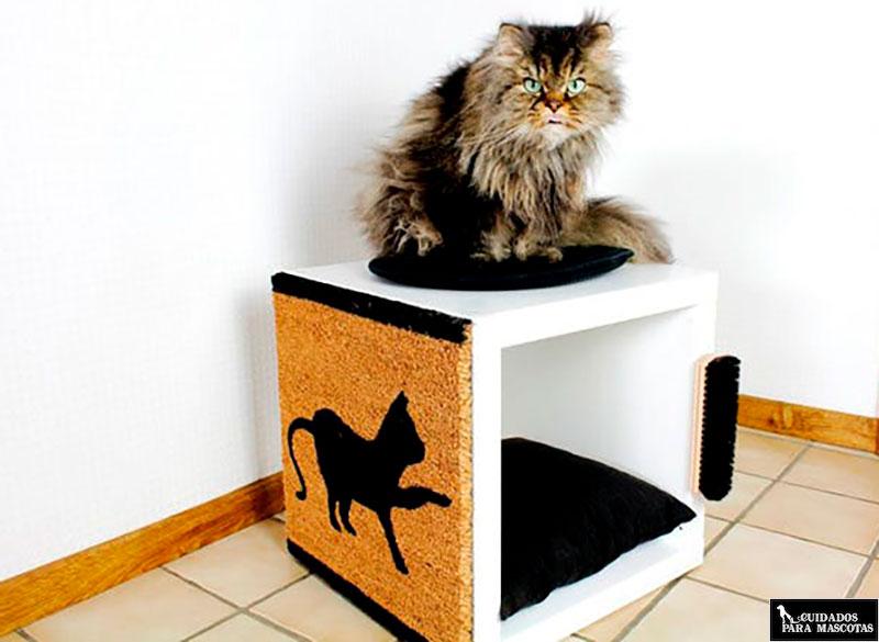Venta anticipada Personas con discapacidad auditiva Hervir  Rascadores para gatos baratos y hechos en casa, hazlo tú mismo