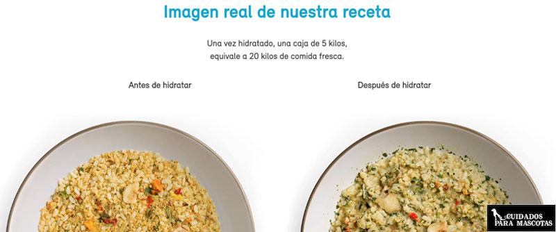 Dieta Naku para perros sin cereales