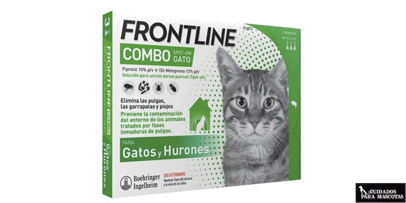 Antiparasitarios para gatos en formato pipeta