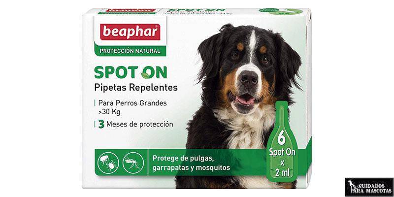 Pipetas antiparasitarias para perros
