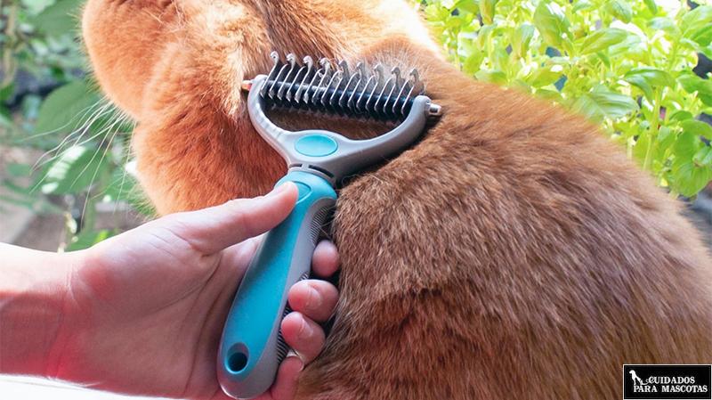 Cepillo de púas anchas para gato de Navaris