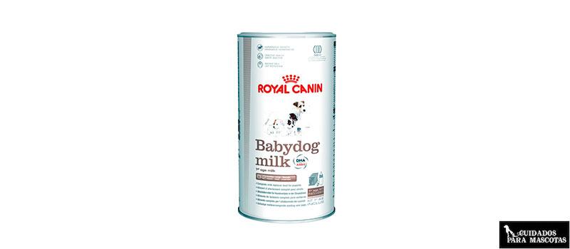 Leche para cachorros Babydog Milk de Royal Canin