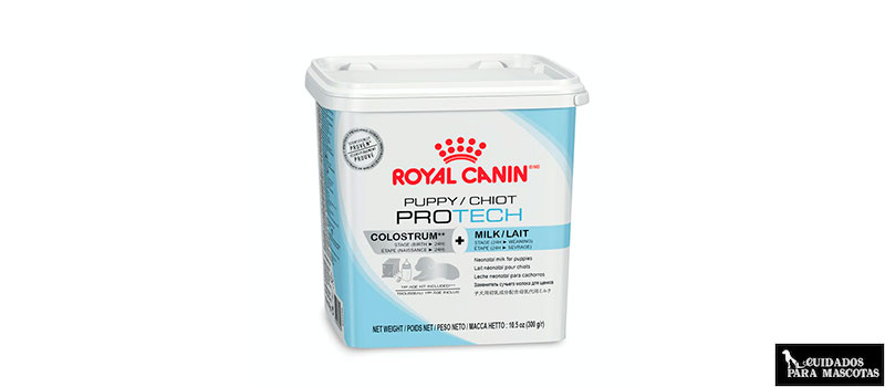 Protech de Royal Canin