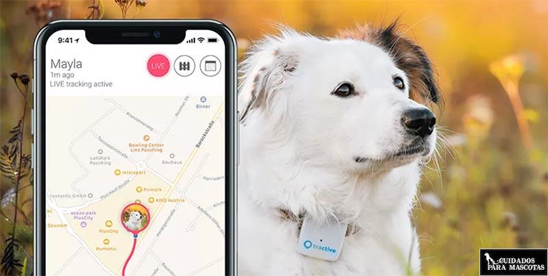 Localizador GPS con rutas