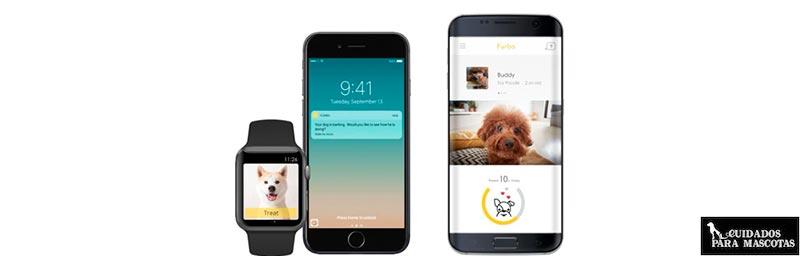App para móviles de Furbo