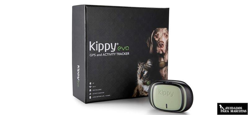 Kippy EVO GPS para perros