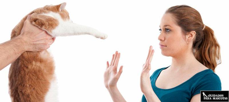 Alergia a mi gato