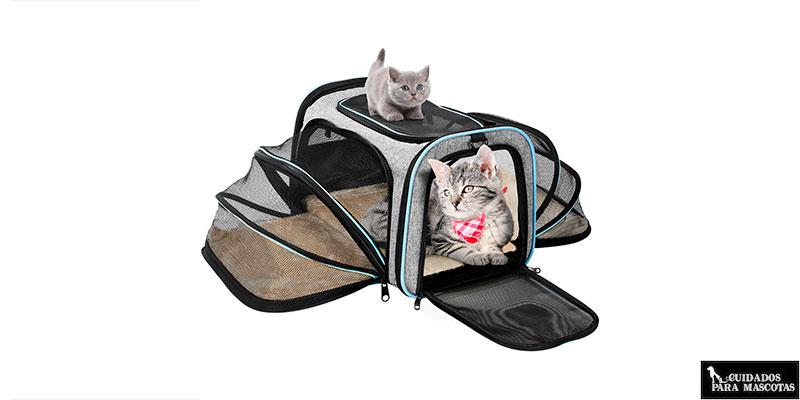 Transportines de tela para gatos