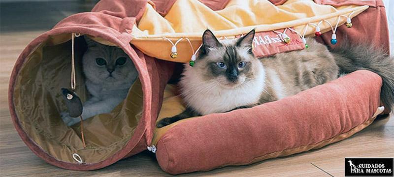 Túneles con cama