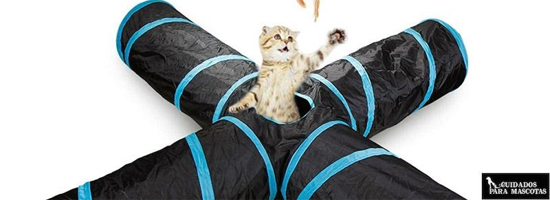 Túnel para gatos de varias vías
