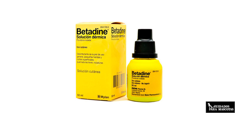 Betadine diluido para las heridas de tu perro
