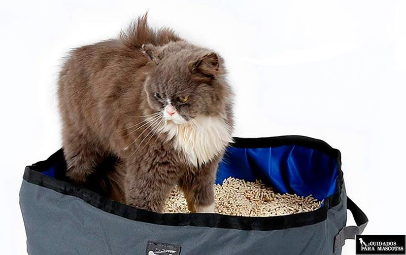 Arenero portátil para gato
